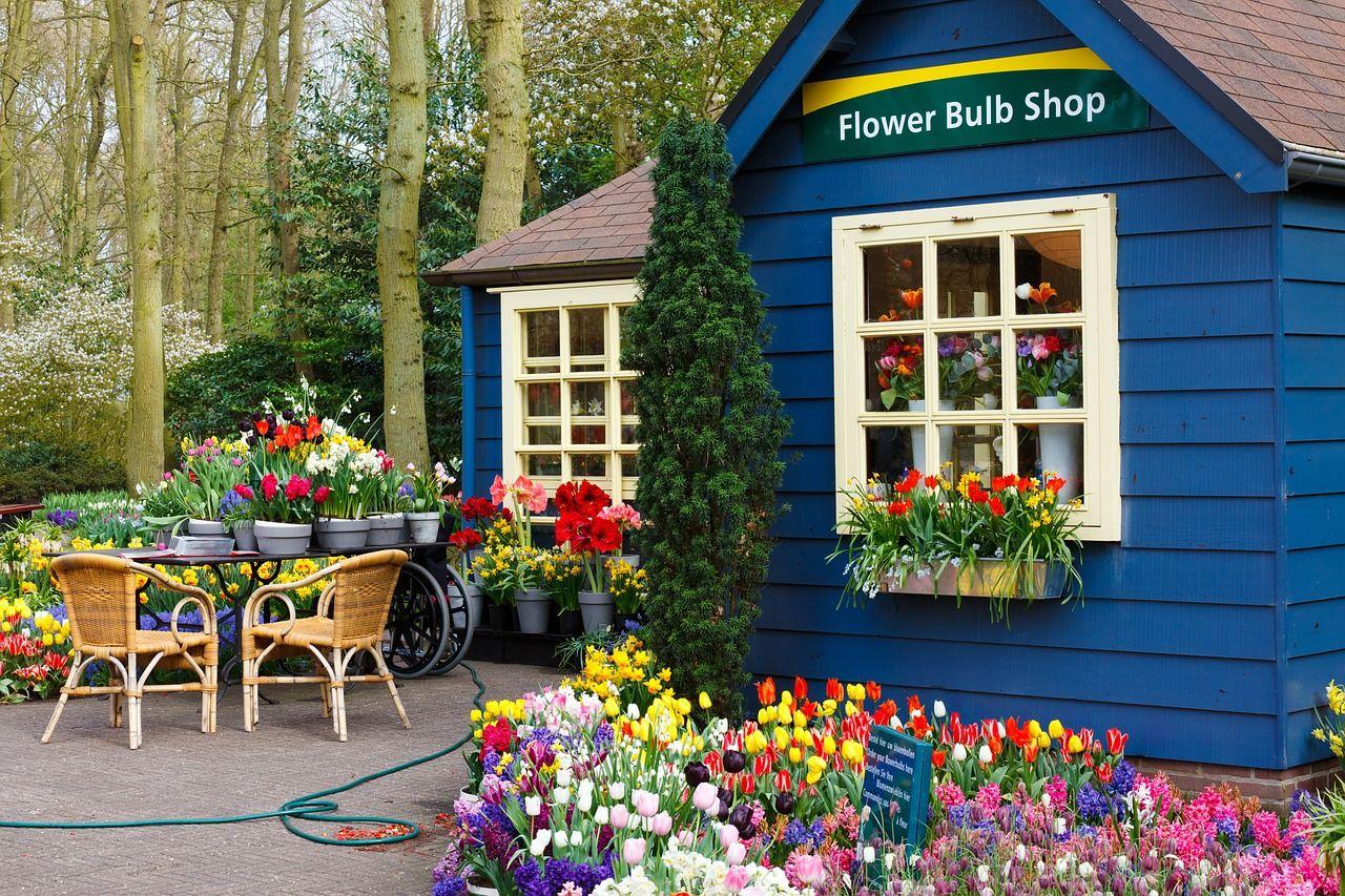 Jak niewielkim kosztem ozdobić ogród?